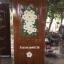ประตูไม้สักบานเดี่ยว แกะดอกไม้ เกรดA รหัส C06 thumbnail 1