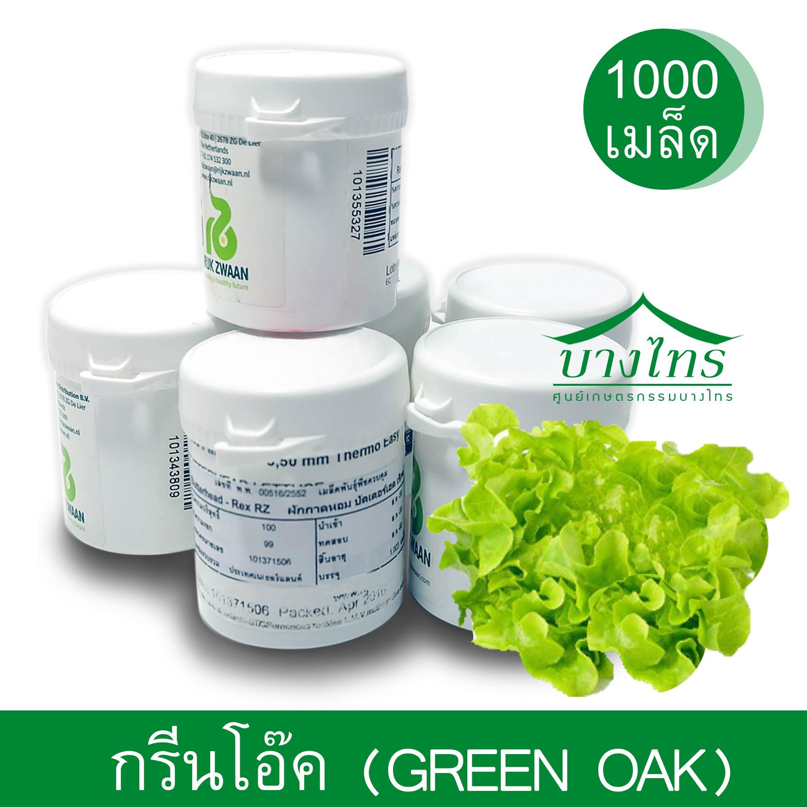 เมล็ดพันธุ์กรีนโอ๊ค / Green Oak ชนิดเคลือบ อัตราการงอก 99%