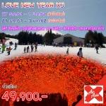 JGC LOVENEWYEAR_XJ ทัวร์ ญี่ปุ่น LOVE NEW YEAR โตเกียว ฟูจิ ฮาโกเน่ ชมไฟฤดูหนาว โอซาก้า ลานสกี 6 วัน 3 คืน บิน XJ