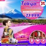 ZT NRT17 ทัวร์ ญี่ปุ่น STRONG PINKMOSS IN TOKYO 5 วัน 3 คืน บิน XJ
