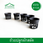 ถ้วยพลาสติกสีดำสำหรับปลูกสลัด (แบบถาวร)