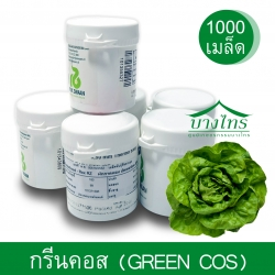 เมล็ดพันธุ์กรีนคอส / Green Cos ชนิดเคลือบ อัตราการงอก 99%