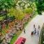 สวนนงนุช Nong Nooch Garden & Resort thumbnail 6
