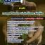 แนวข้อสอบช่างไม้ กรมอุทยานแห่งชาติ สัตว์ป่าและพันธุ์พืช NEW thumbnail 1
