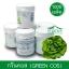 เมล็ดพันธุ์กรีนคอส / Green Cos (เคลือบ) 1,000 เมล็ด