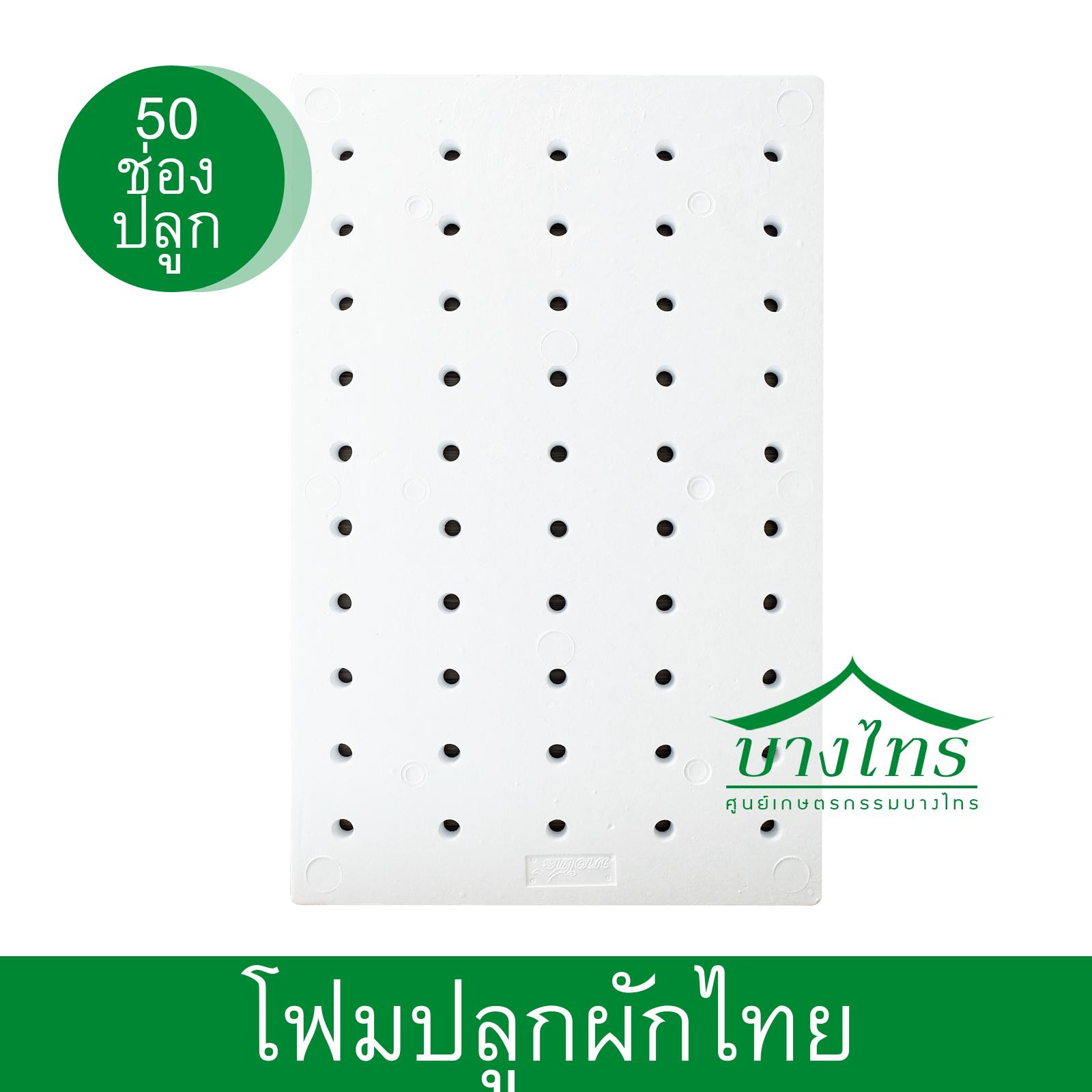 โฟมแผ่นปลูก (ผักไทย) ขนาด 50 ช่องปลูก