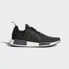 Adidas Originals NMD R1 PK Color Core Black/Carbon/Ftwr White